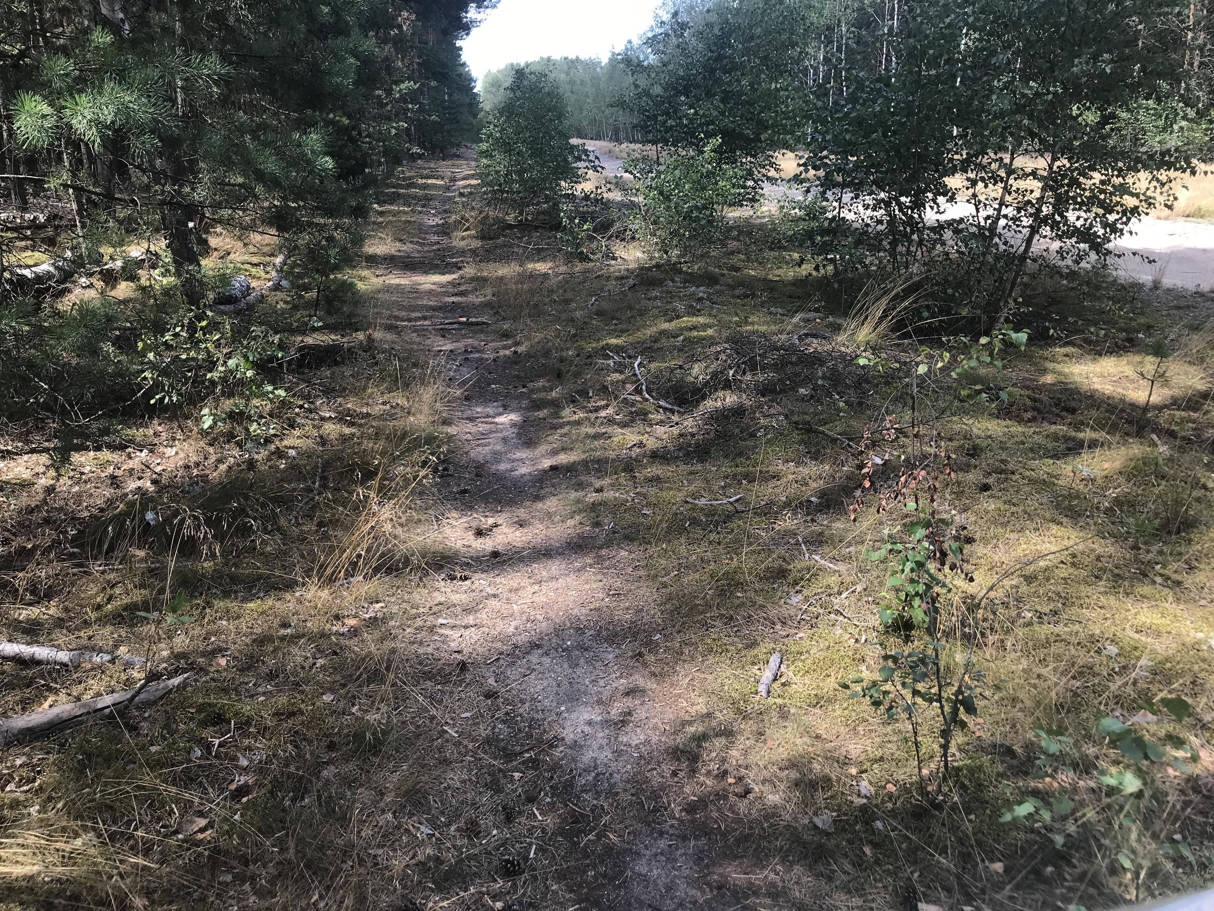 f-oderradweg-lebus